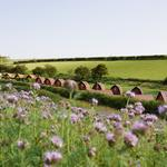 Sunday 24th June Open Day at an Award-Winning Glamping Site