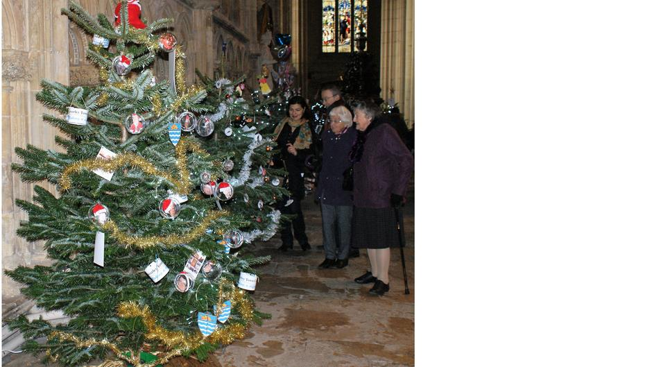 Minster Christmas Trees