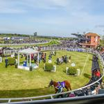 BEN CURTIS AND SIR MICHAEL STOUTE UNITE IN BEVERLEY FEATURE