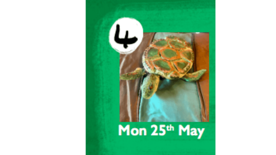 Beverley Puppet Festival: LEATHERBACK TURTLE PUPPET