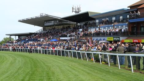 PONY PRIMED FOR BIG DISPLAY AT BEVERLEY FINALE