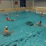 REVIVED WATER POLO CLUB OFFERS FREE SESSION FOR NEW MEMBERS