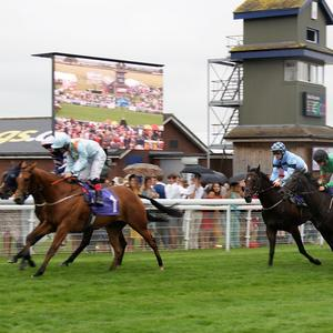 Beverley Races to return, but without spectators for first time in 330 years