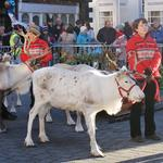 The Beverley Festival of Christmas is this Sunday!