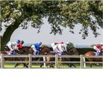 ALFA BETTER THAN EVER FOR BEVERLEY RETURN