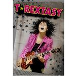 RELIVE THE 1970'S GLAM ROCK ERA WITH T.REXTASY